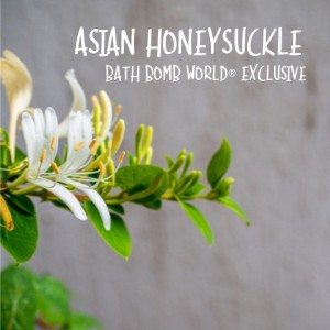 Asian Honeysuckle Fragrance Oil BBW