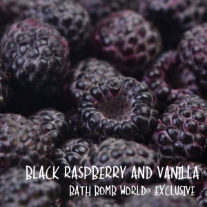 Black Raspberry and Vanilla Fragrance Oil BBW® Exclusive
